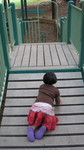 olive would not walk to get off of the bridge; she insisted on crawling.
